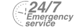 24/7 Emergency Service Pest Control in Bromley-by-Bow, Bow, E3. Call Now! 020 8166 9746